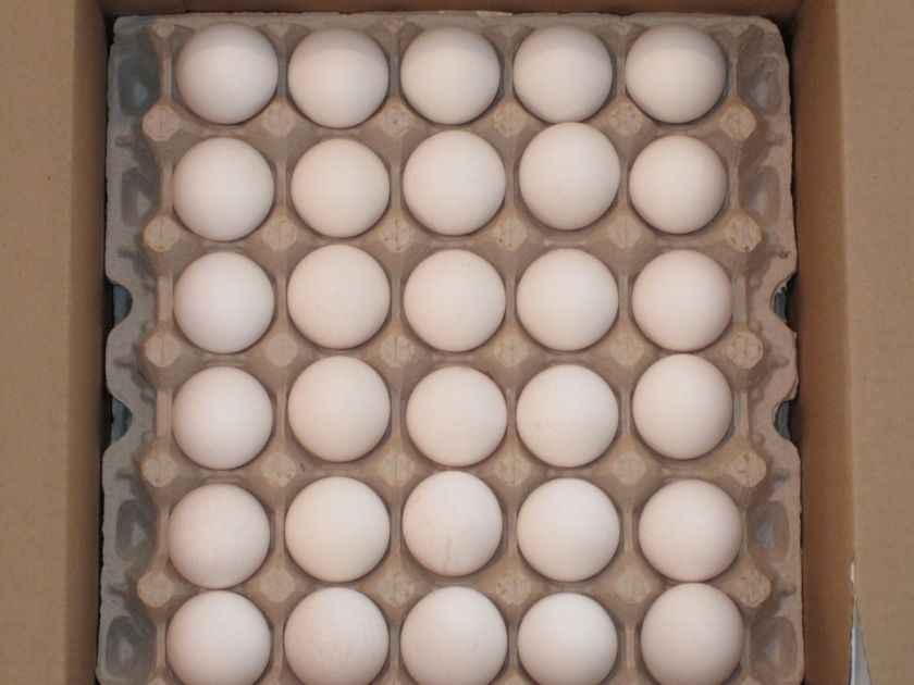 It was the first (but not the last) time I bought the huge box of eggs at Costco.