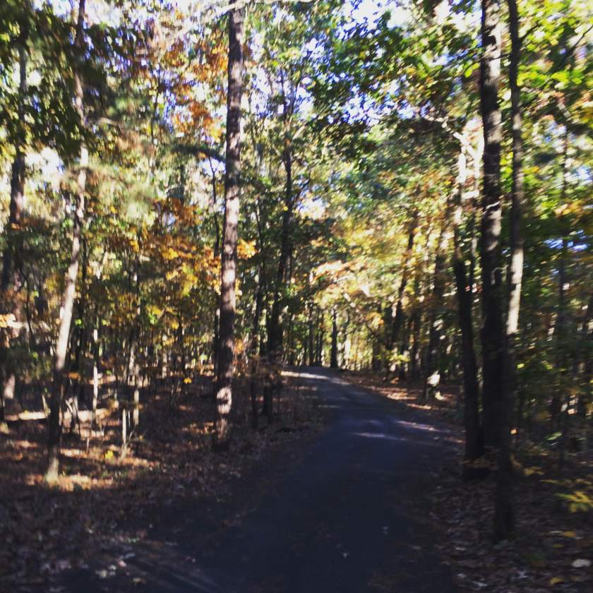 On the way to Lake Kedron, Peachtree City, Georgia