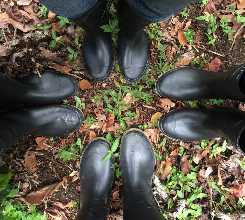 We all bought rubber boots because we heard there were snakes at the coffee plantation! Photo by Pamela Klein