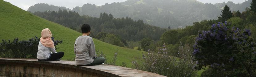 http://www.contemplativemind.org/admin/wp-content/uploads/2012/08/pagebanner-meditation.jpg