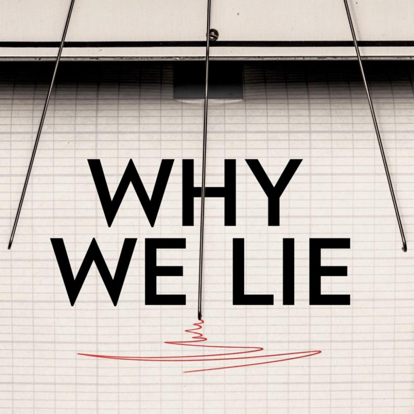 why-we-lie-cover.ngsversion.1495080089200.adapt.1900.1