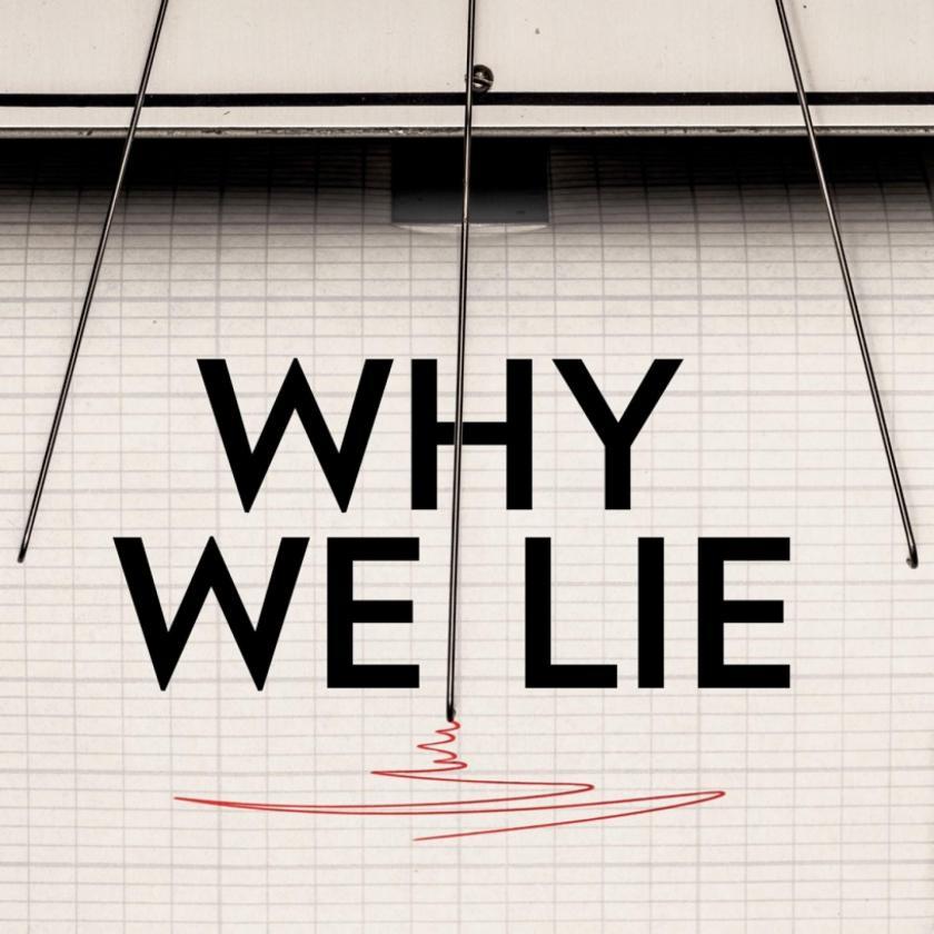 why-we-lie-cover.ngsversion.1495080089200.adapt.1900.1